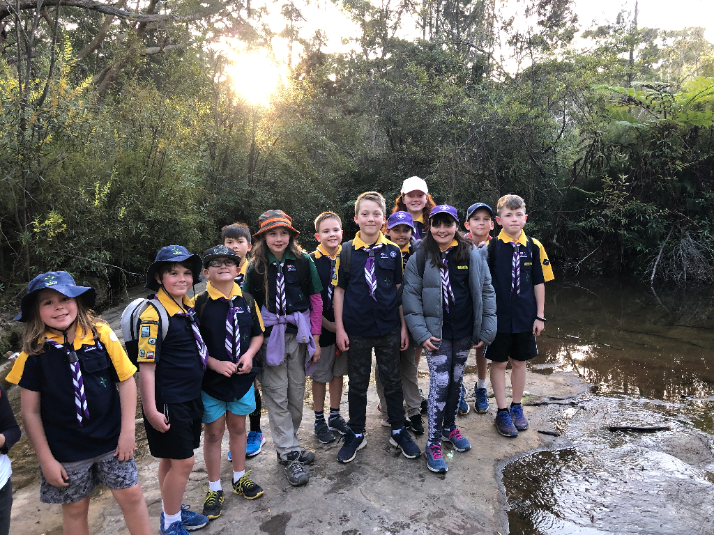 Allambie Heights Scouts