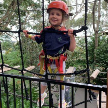 Joeys go on Tree Adventures @ Taronga