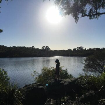 Evening bushwalk when camping with the Joeys at Manly Dam