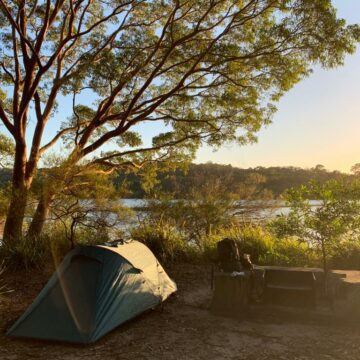 Joey Camp at Manly Dam
