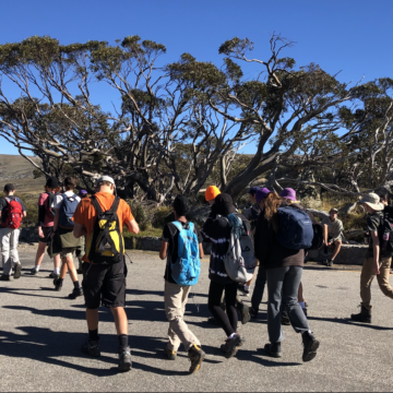 Venturers walking in the Snowy Mountains