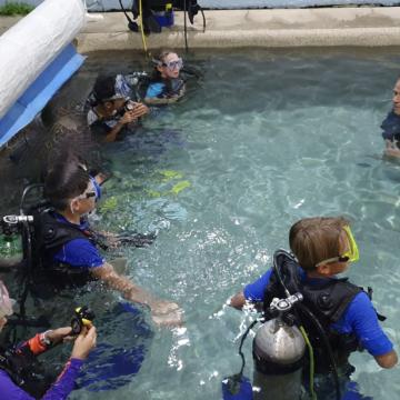 Scout scuba diving lessons